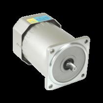 AC感應馬達 - 120W